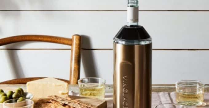 🥇[TOP 10] – The Best Wine Bottle Chiller Reviews in 2021