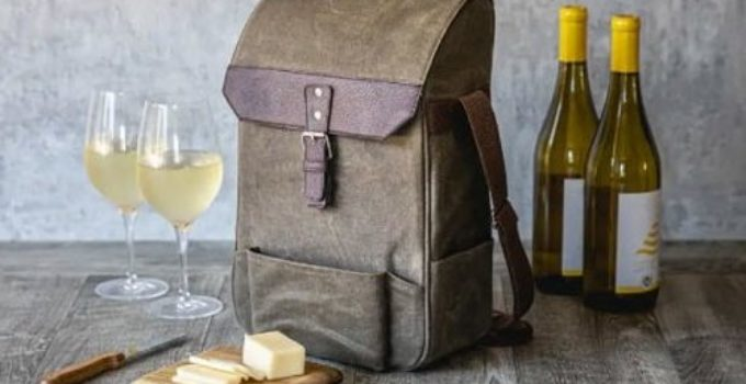 🥇[TOP 10] Best Portable Wine Cooler Reviews in 2021
